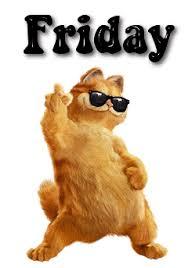 cats Friday