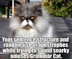 grammar cat
