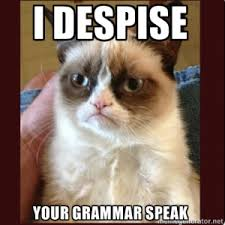 grumpy cat despises cat grammar speak