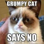 Grumpy cat says no