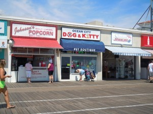Ocean City Dog and Kitty