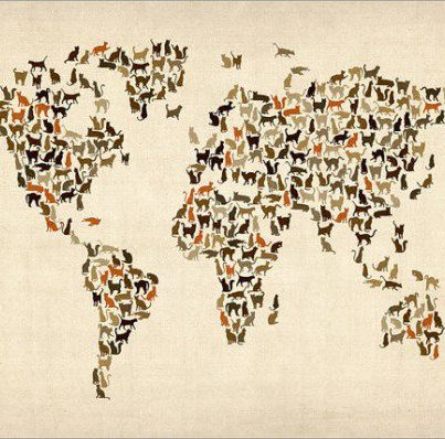 INternational cat day map.