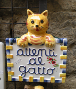 A kitty I found in San Gimignano, Italy.