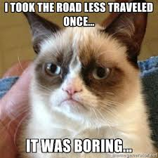 Grumpy Cat...road less taken