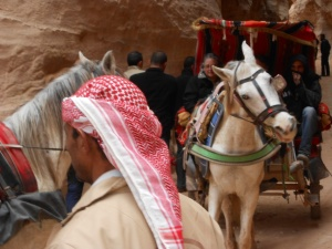 2012 Israel Trip 1038
