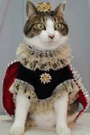 Royalty, Photo Credit: Elsie the Cat