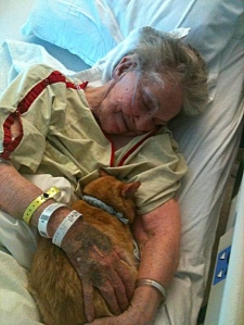 Photo credit: David McElroy Cat comforts dying woman