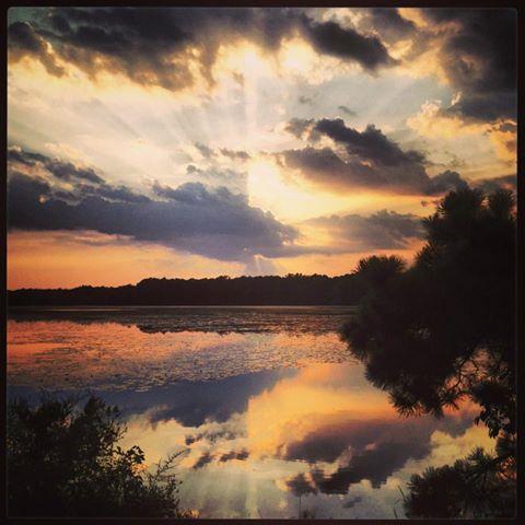Photo by Cassandra Heck Lake Fred at Stockton College, Galloway, NJ