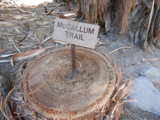 McCallum Trail