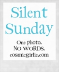 Silent-Sunday...