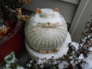 Snow on top of another of my many garden cats.