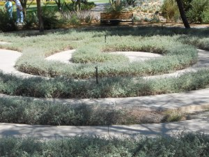 Labyrinth on the Annenberg Estate, Rancho Mirage, CA at the corners of Bob Hope and Frank Sinatra Drives.