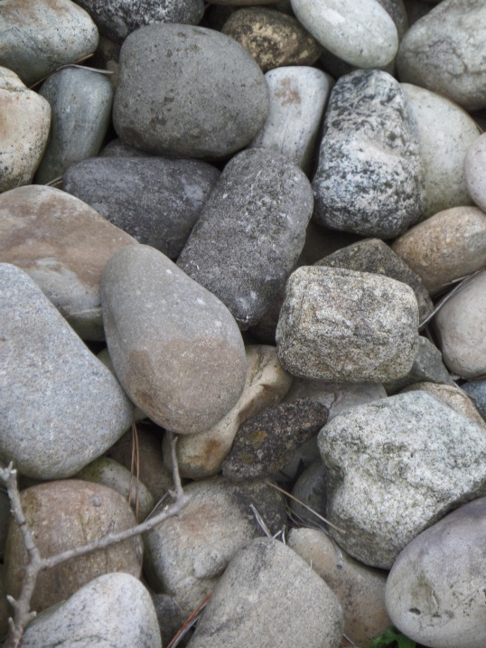 Stones along the boardwalk...