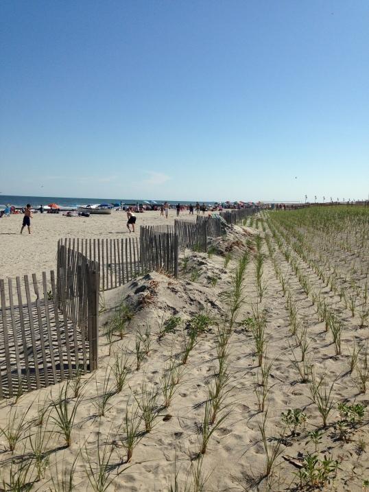 Ocen City, NJ beach Janice Heck photo